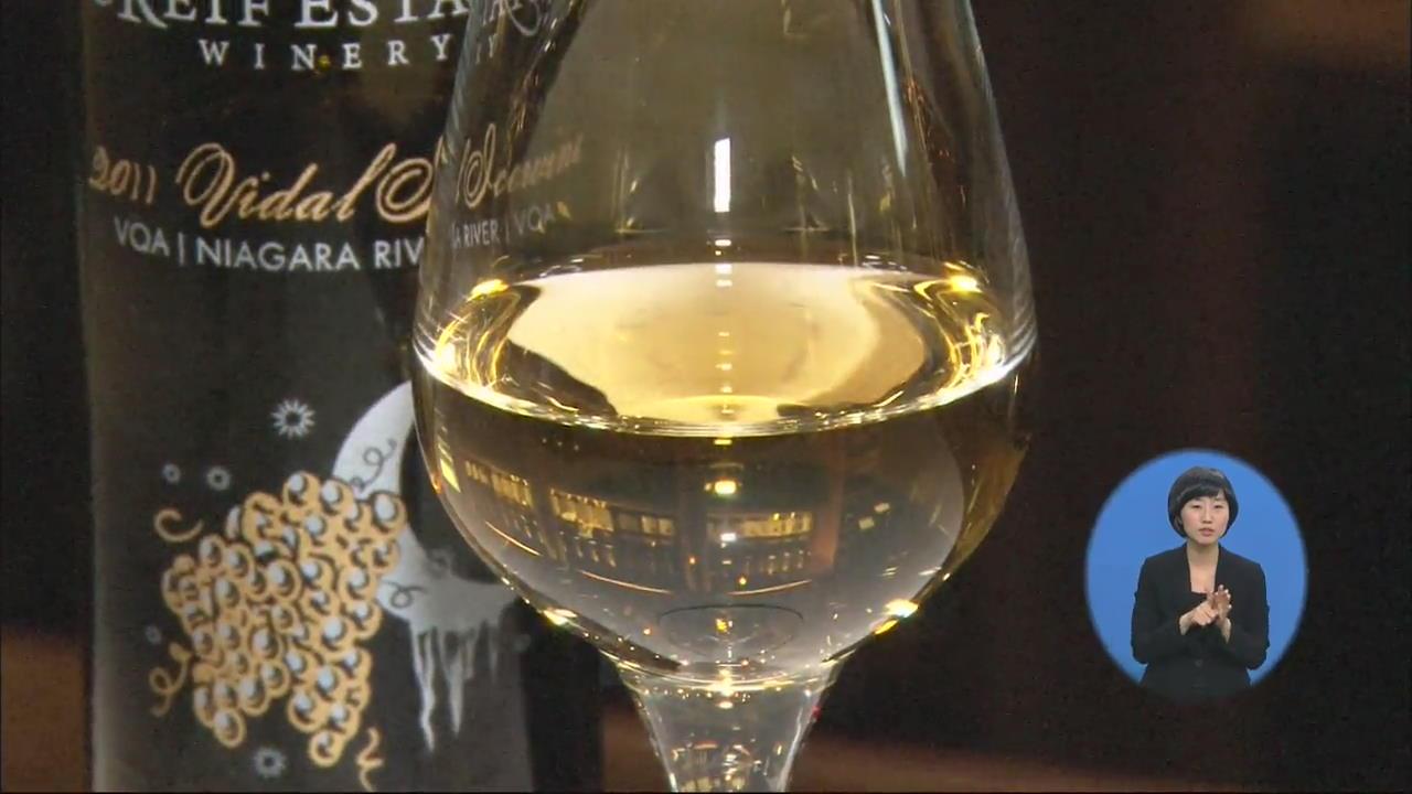 [클릭! 세계속으로] 캐나다 아이스 와인