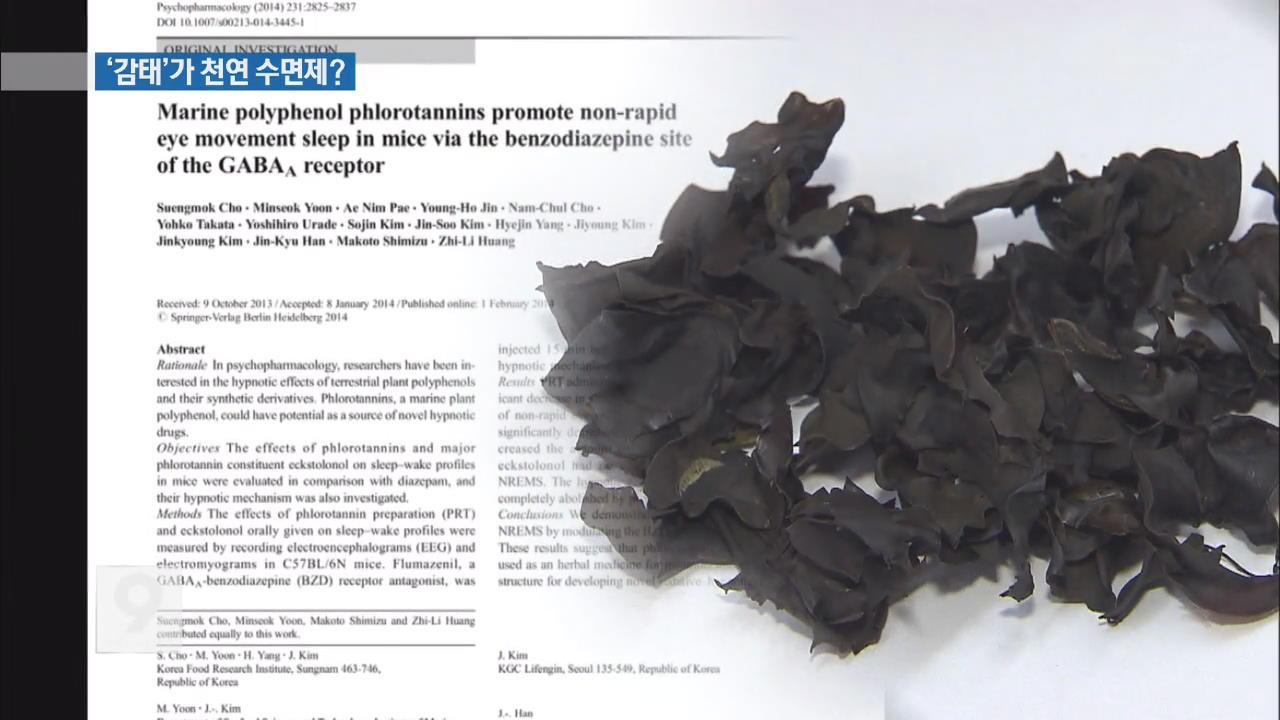 '불면증' 잡는 해조류 '감태'…건강기능식품 인정