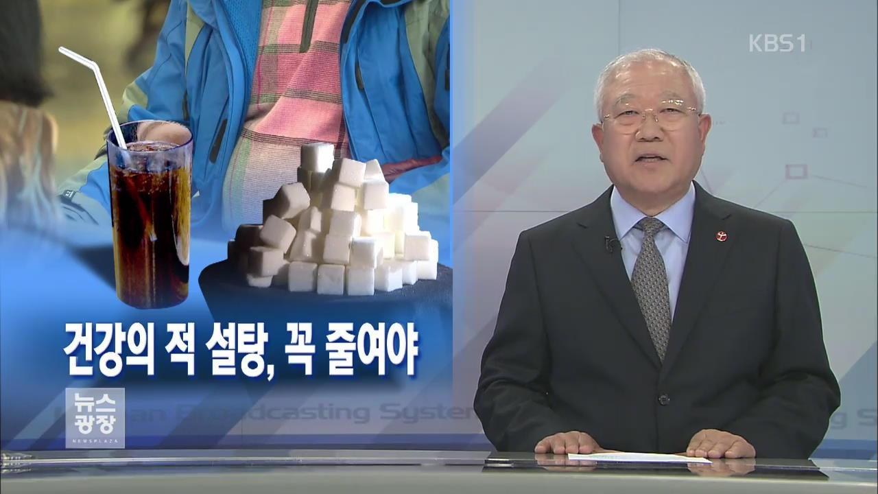 [뉴스해설] 건강의 적 설탕, 꼭 줄여야