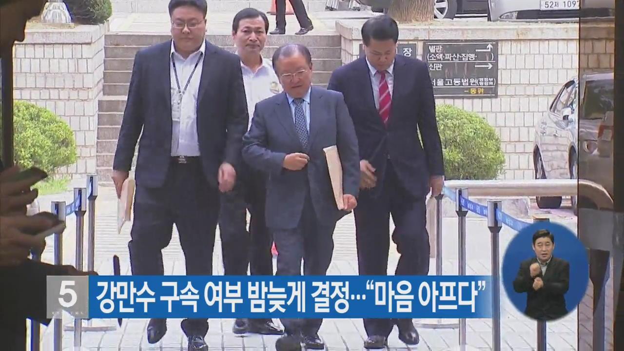 """강만수 구속 여부 밤늦게 결정…""""마음 아프다"""""""