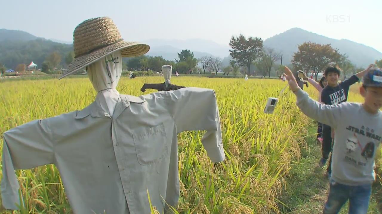 [뉴스광장 영상] 허수아비 마을