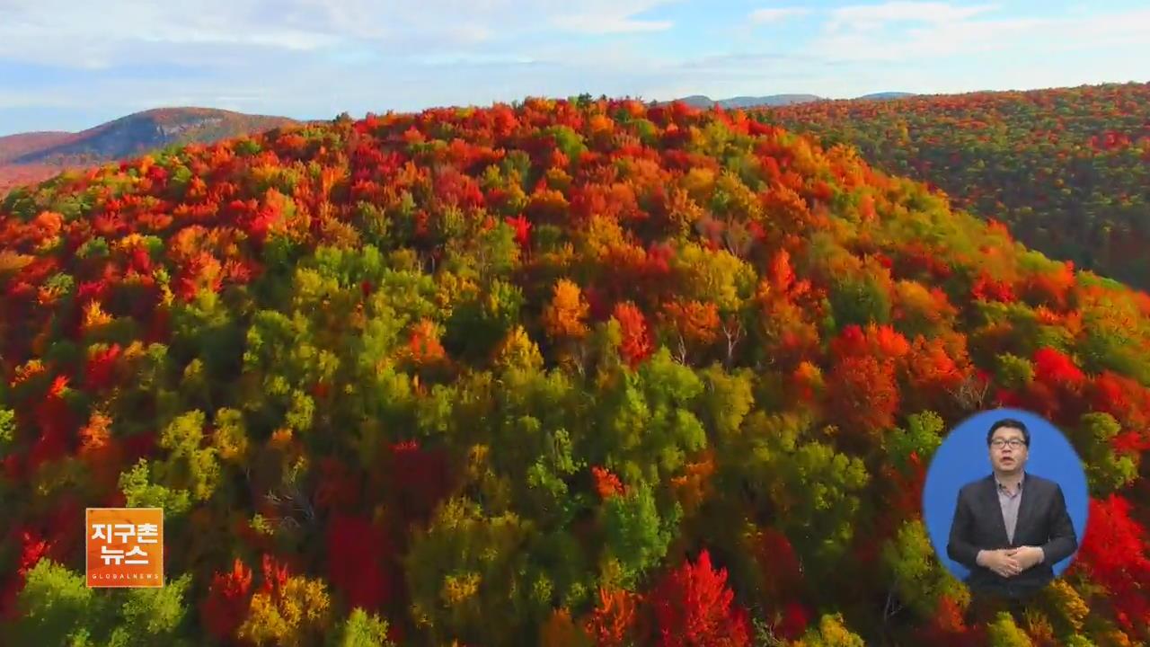 [지구촌 화제 영상] 드론이 포착한 미국 북동부 '초가을 풍경'