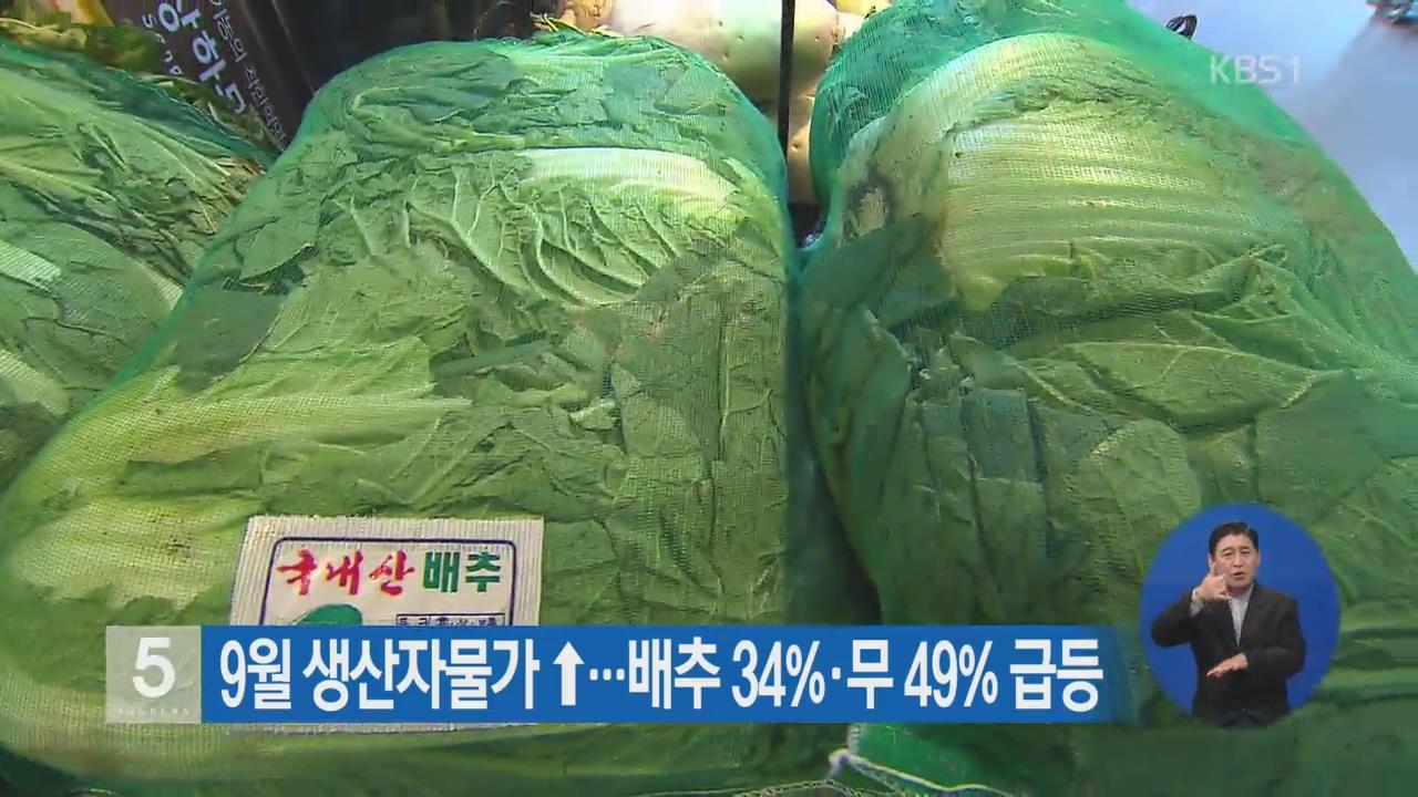 9월 생산자물가 ↑…배추 34%·무 49% 급등