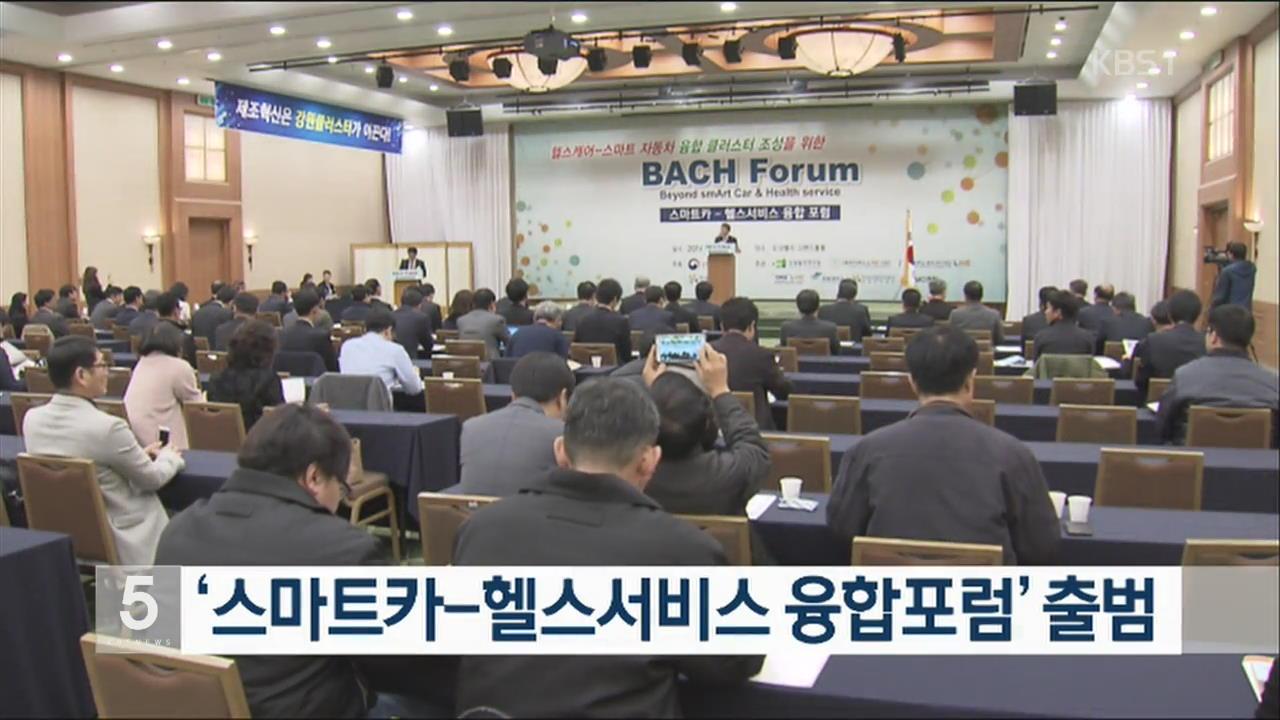 '스마트카-헬스서비스 융합포럼' 출범