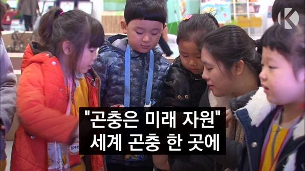 """[라인뉴스] """"곤충은 미래 자원"""" 세계 곤충 한 곳에"""