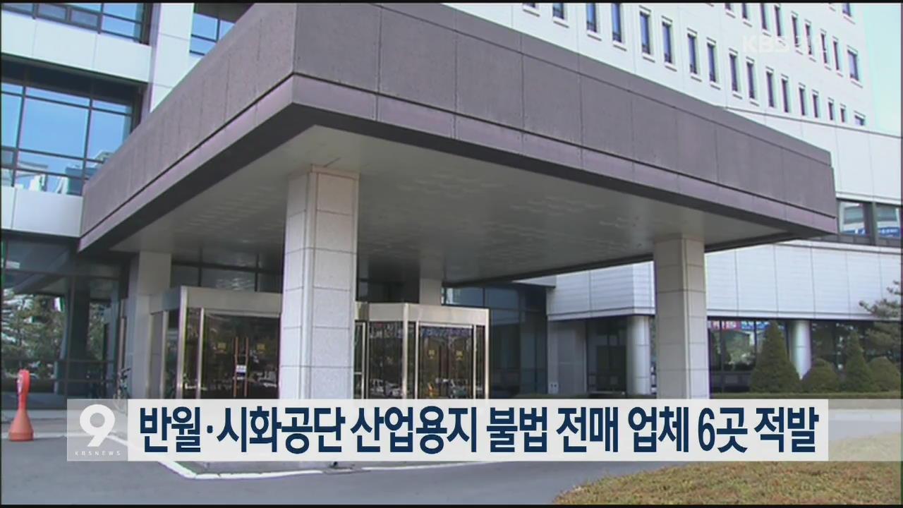 반월·시화공단 산업용지 불법 전매 업체 6곳 적발