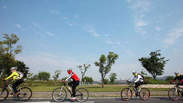 한강공원 자전거 대여 내년부터 재개