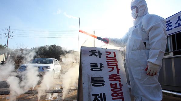양주·화성·평택 AI 확진…안산 습지공원 등 시설 폐쇄