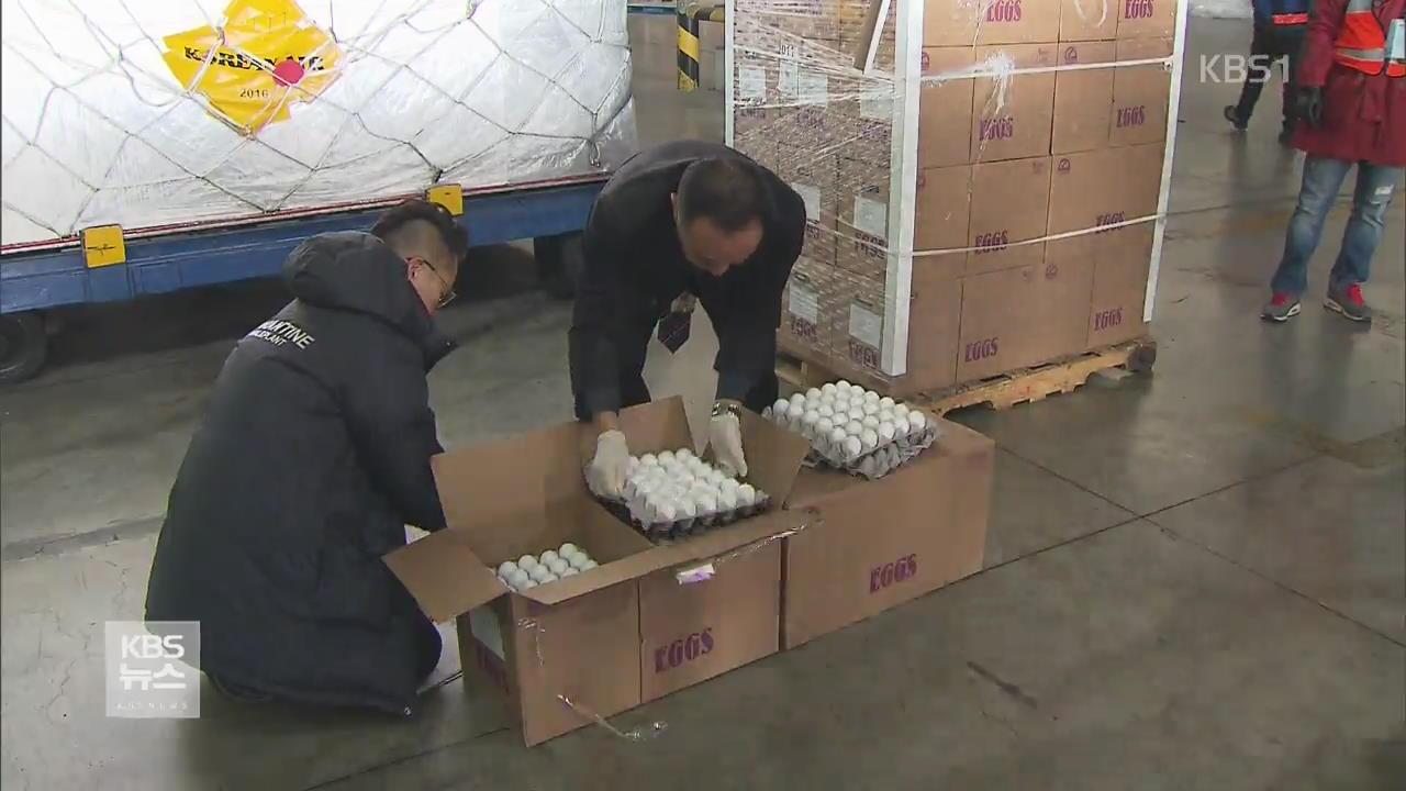 미국산 달걀 300만 개 도착…다음 주말 판매