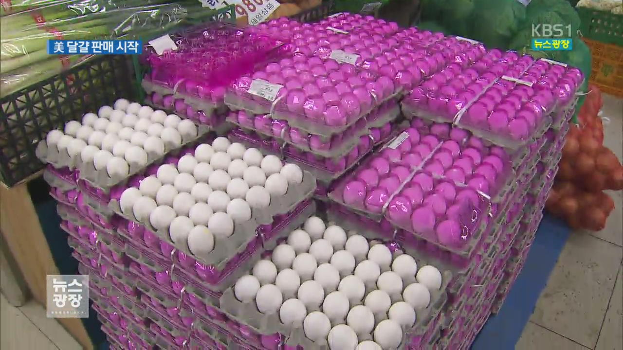 미국산 달걀 소비자 판매 시작…동네슈퍼에 등장