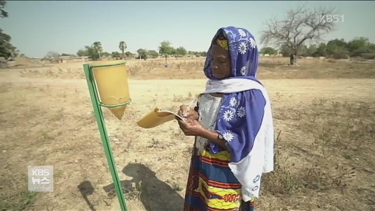 기후 변화로 말리 농민들 삶 타격