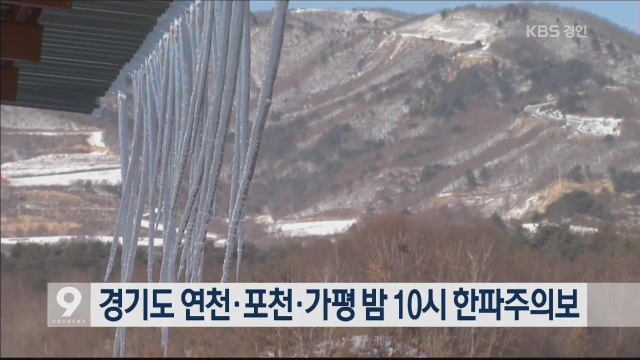 경기도 연천·포천·가평 오후 10시 한파주의보