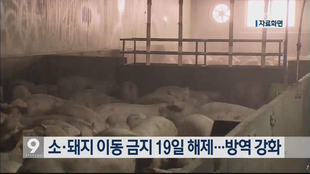 소·돼지 이동 금지 19일 해제…방역 강화