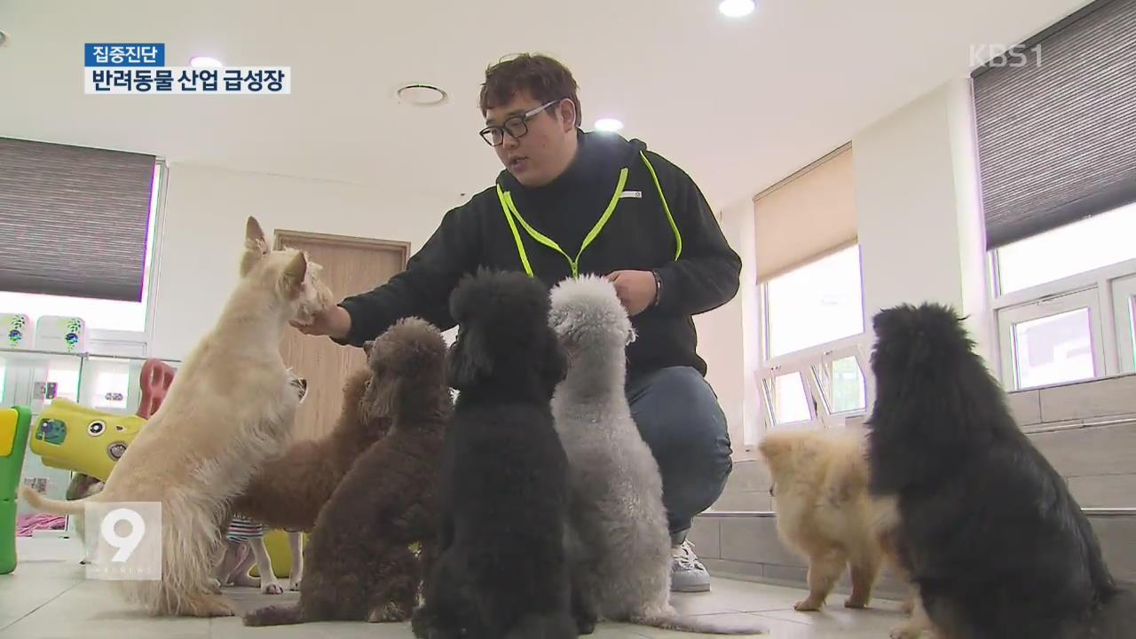 [집중진단] ① 반려동물 산업 급성장…유치원·침술까지
