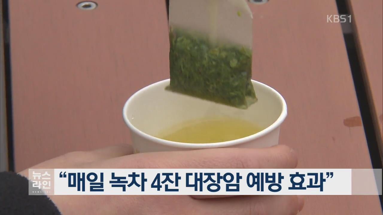 """""""매일 녹차 4잔 대장암 예방 효과"""""""