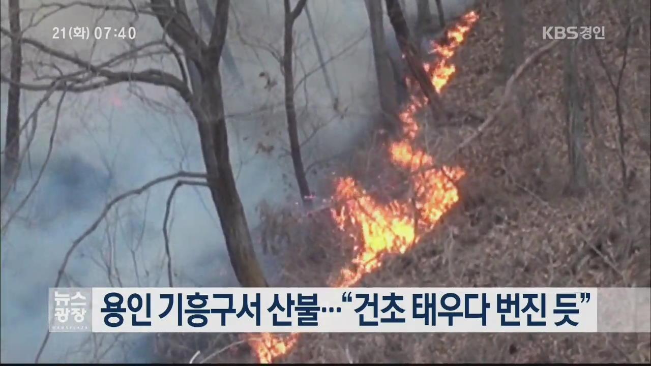 """용인 기흥구서 산불…""""건초 태우다 번진 듯"""""""