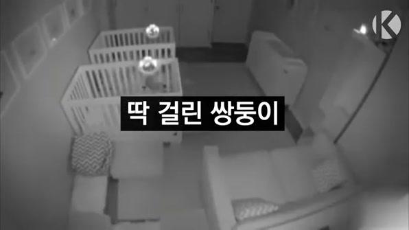 [라인뉴스] 딱 걸린 쌍둥이
