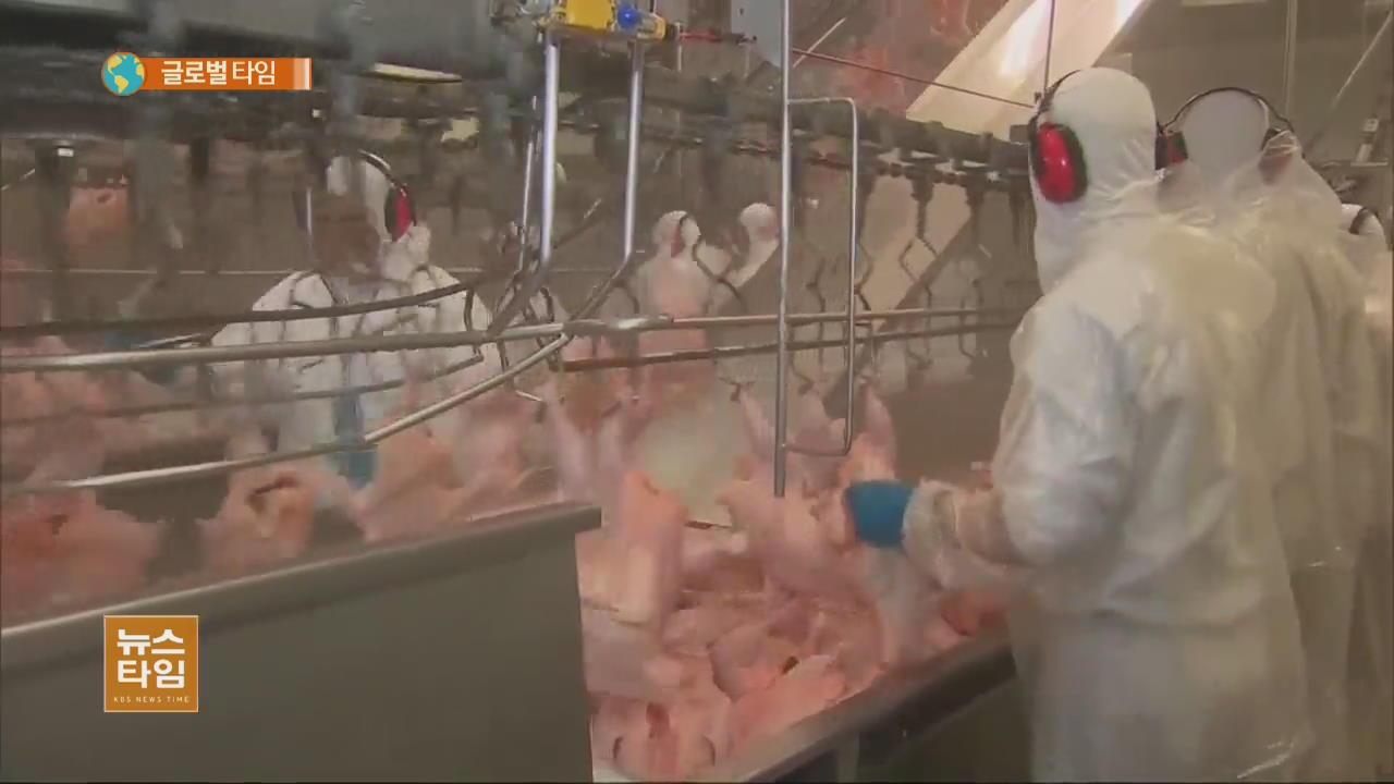 브라질 '상한 고기' 34개국에 수출…각국 '수입 중단'