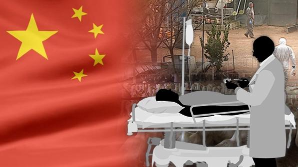 中베이징서 올해 13번째 AI환자 발생