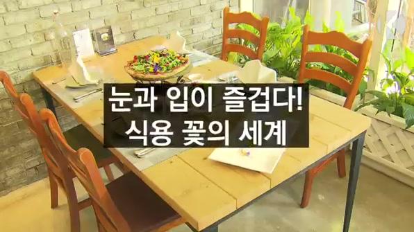 [라인뉴스] 눈과 입이 즐겁다! 식용 꽃의 세계