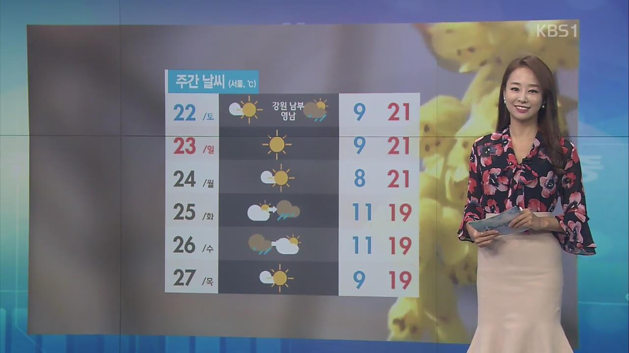 [날씨 집중] 주말, 20도 안팎으로 따뜻