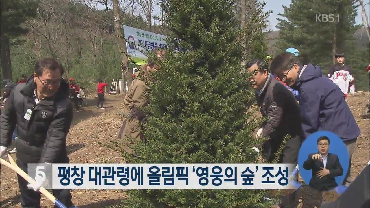평창 대관령에 올림픽 '영웅의 숲' 조성