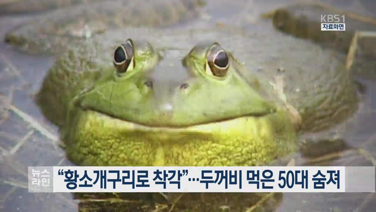 """""""황소개구리로 착각""""…두꺼비 먹은 50대 숨져"""