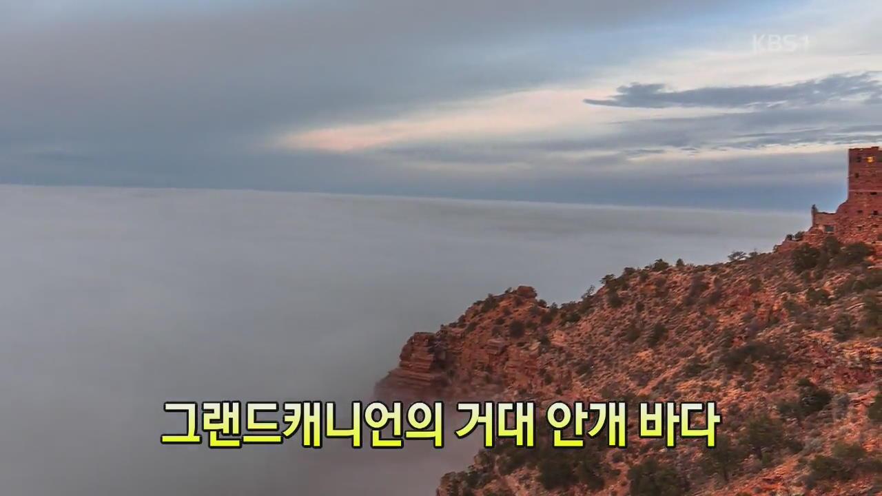 [세상의 창] 그랜드캐니언의 거대 안개 바다