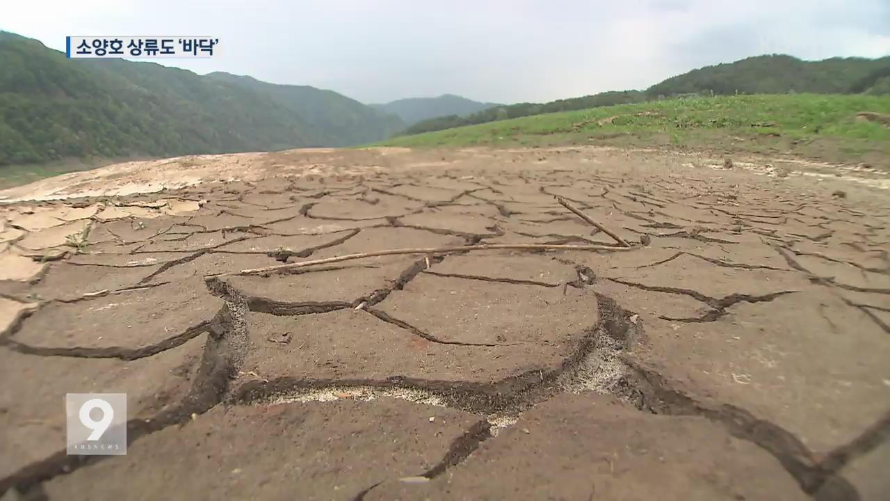 최악의 가뭄…바닥 드러낸 소양호 상류