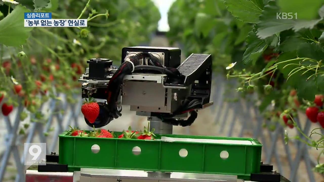 [심층리포트] 로봇·IT로 척척…농부 없는 농장 '성큼'