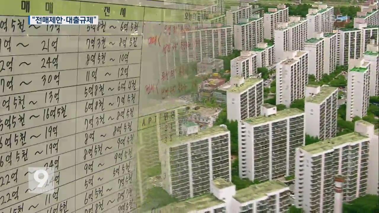 서울 전역 전매제한·대출 규제 강화