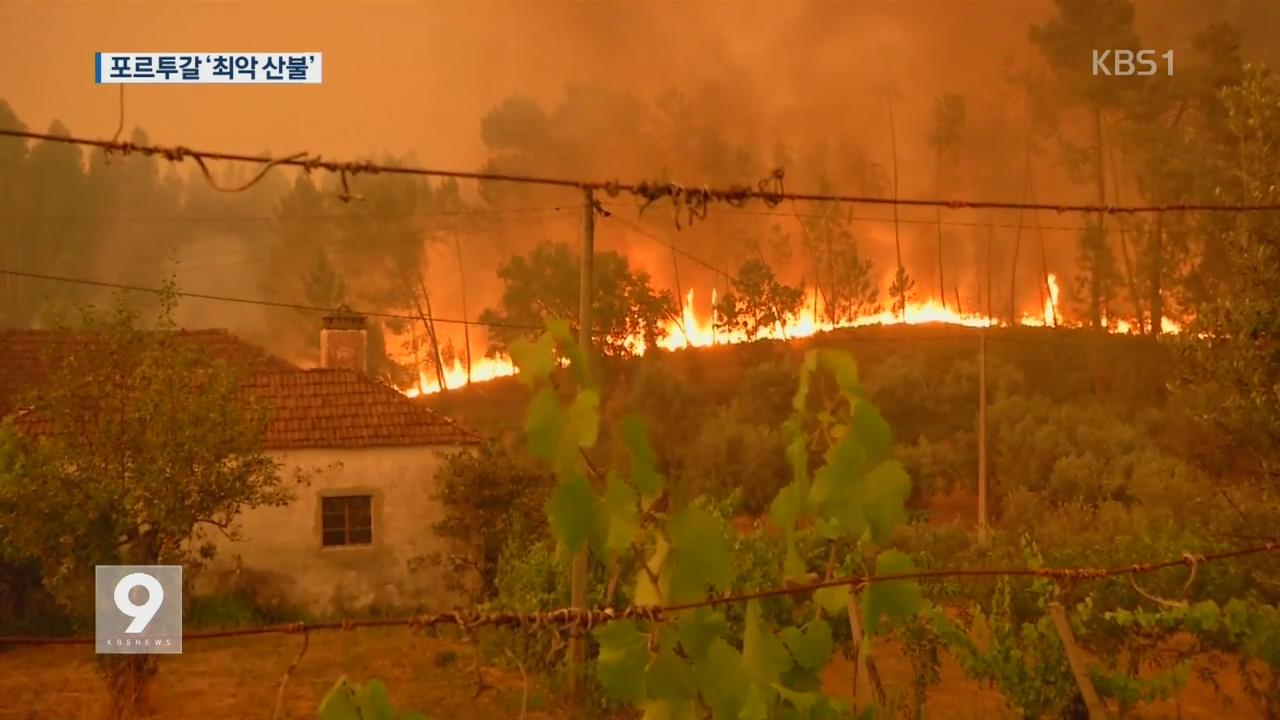 포르투갈 산불 희생자 늘어…진화도 난항