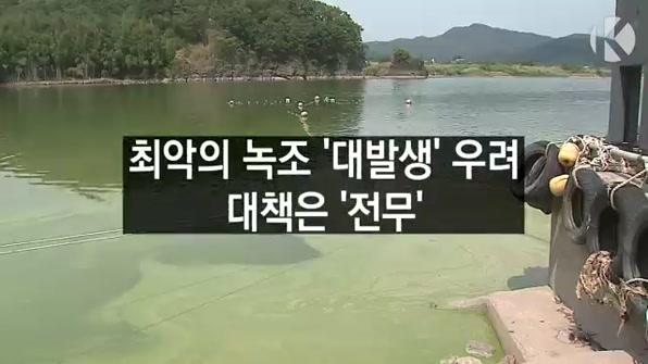 [라인뉴스] 최악의 녹조 '대발생' 우려…대책은 '전무'