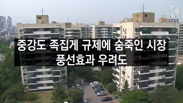 [라인뉴스] 중강도 족집게 규제에 숨죽인 시장…풍선효과 우려도