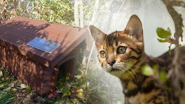 여의도·월드컵공원 '길고양이 급식소' 9개 추가 설치