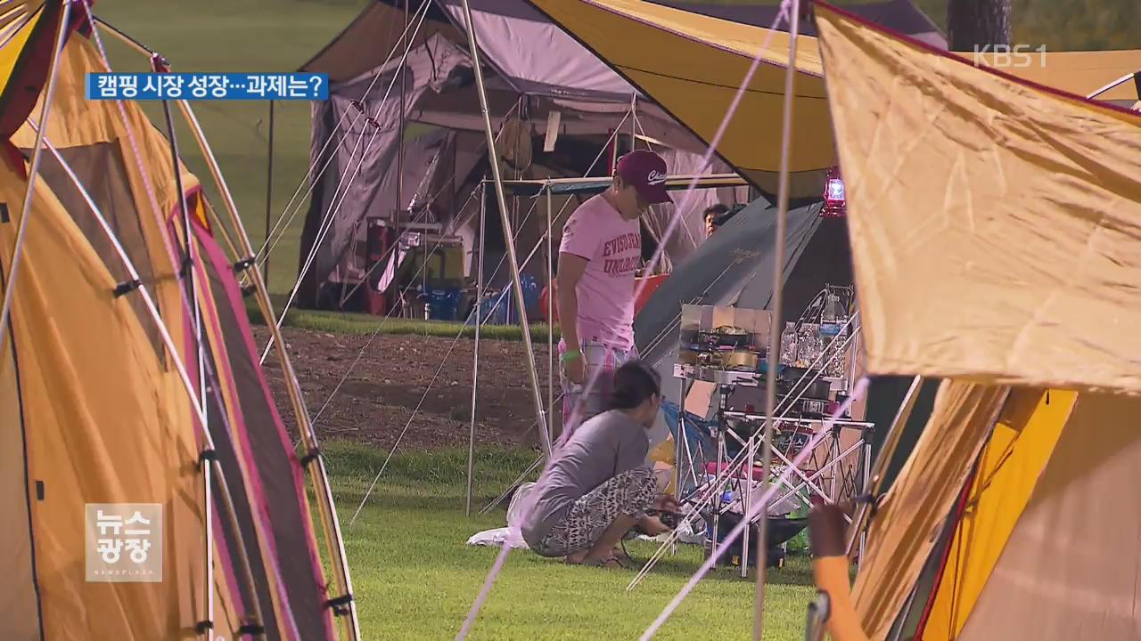 '불편함을 즐기는 문화'…캠핑 시설 안전 강화 시급