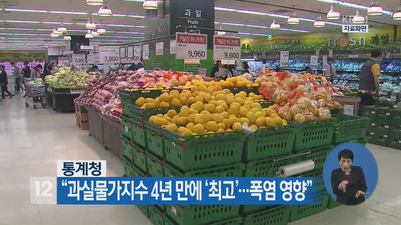 """""""과실물가지수 4년 만에 '최고'…폭염 영향"""""""