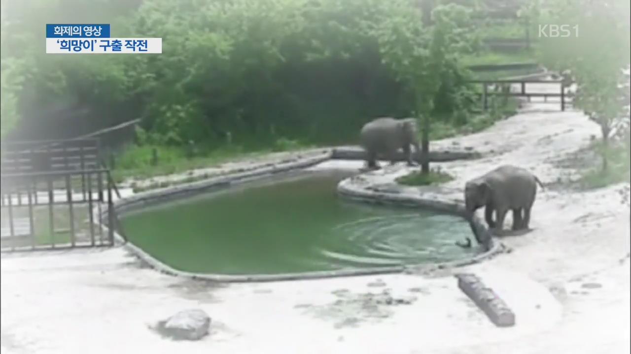 [화제의 영상] '희망이' 구출 작전