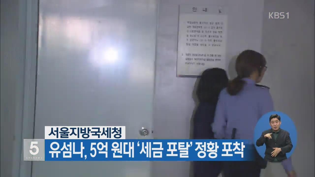 서울지방국세청, 유섬나 5억 원대 '세금 포탈' 정황 포착