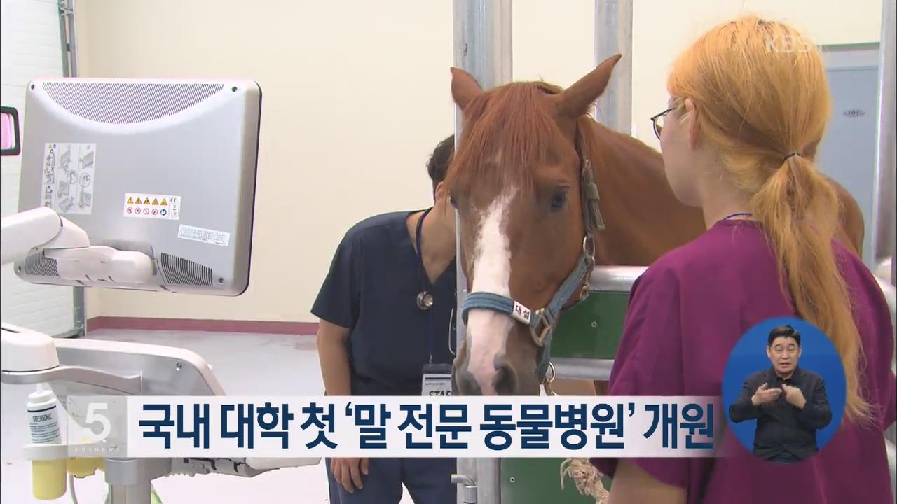국내 대학 첫 '말 전문 동물병원' 개원