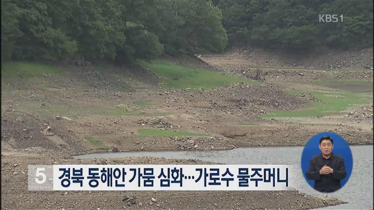 경북 동해안 가뭄 심화…가로수 물주머니