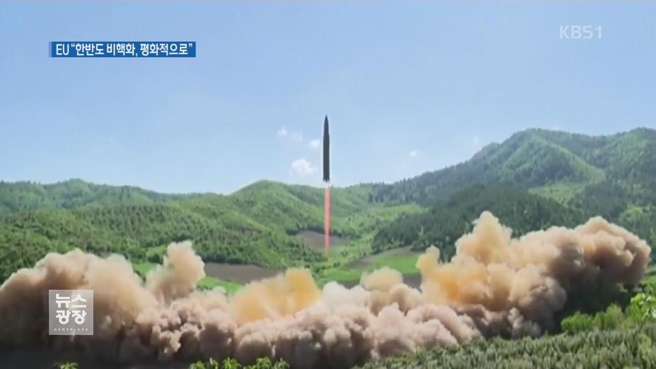 """EU """"한반도 비핵화, 평화적으로 달성해야"""""""