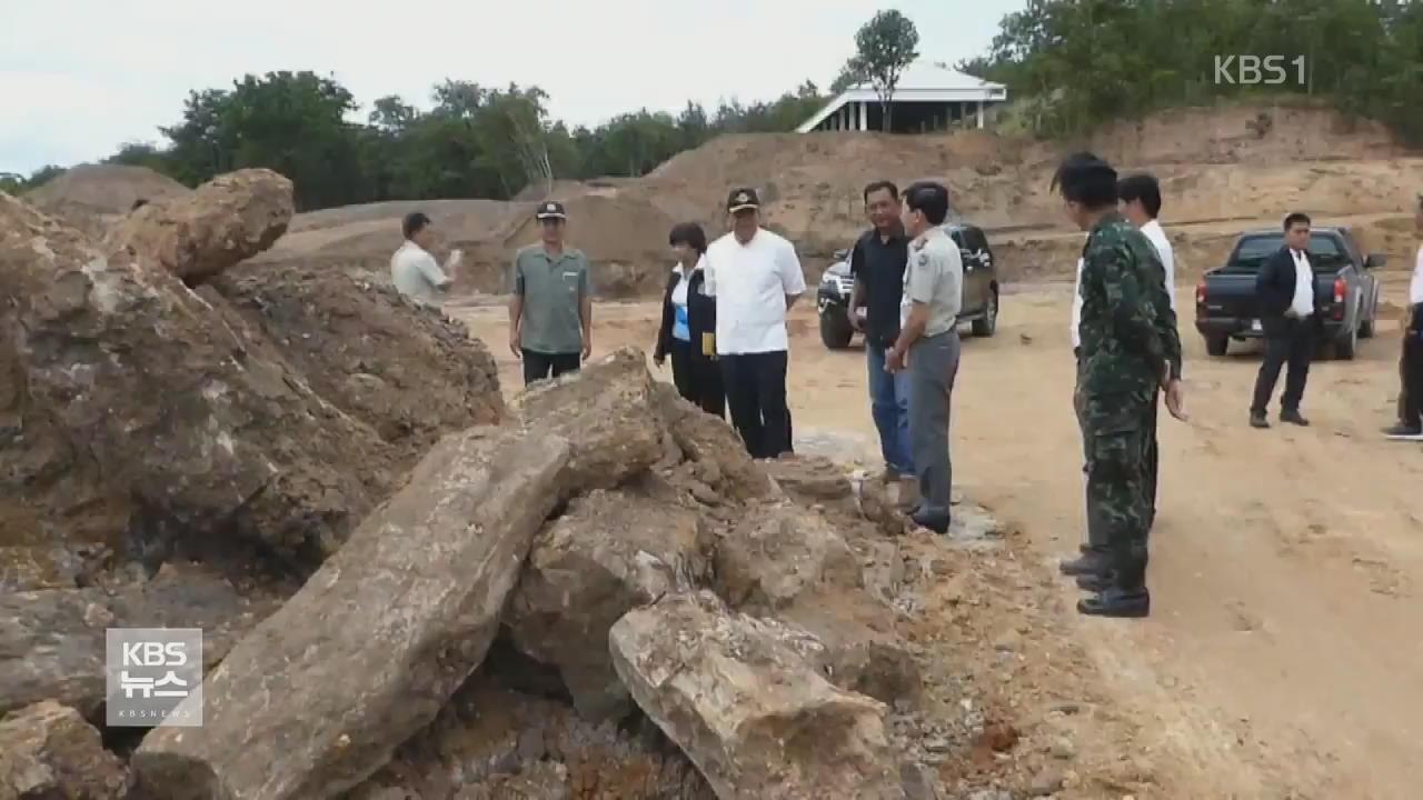 태국, 세계 최대 '길이 72m' 규화목 발견