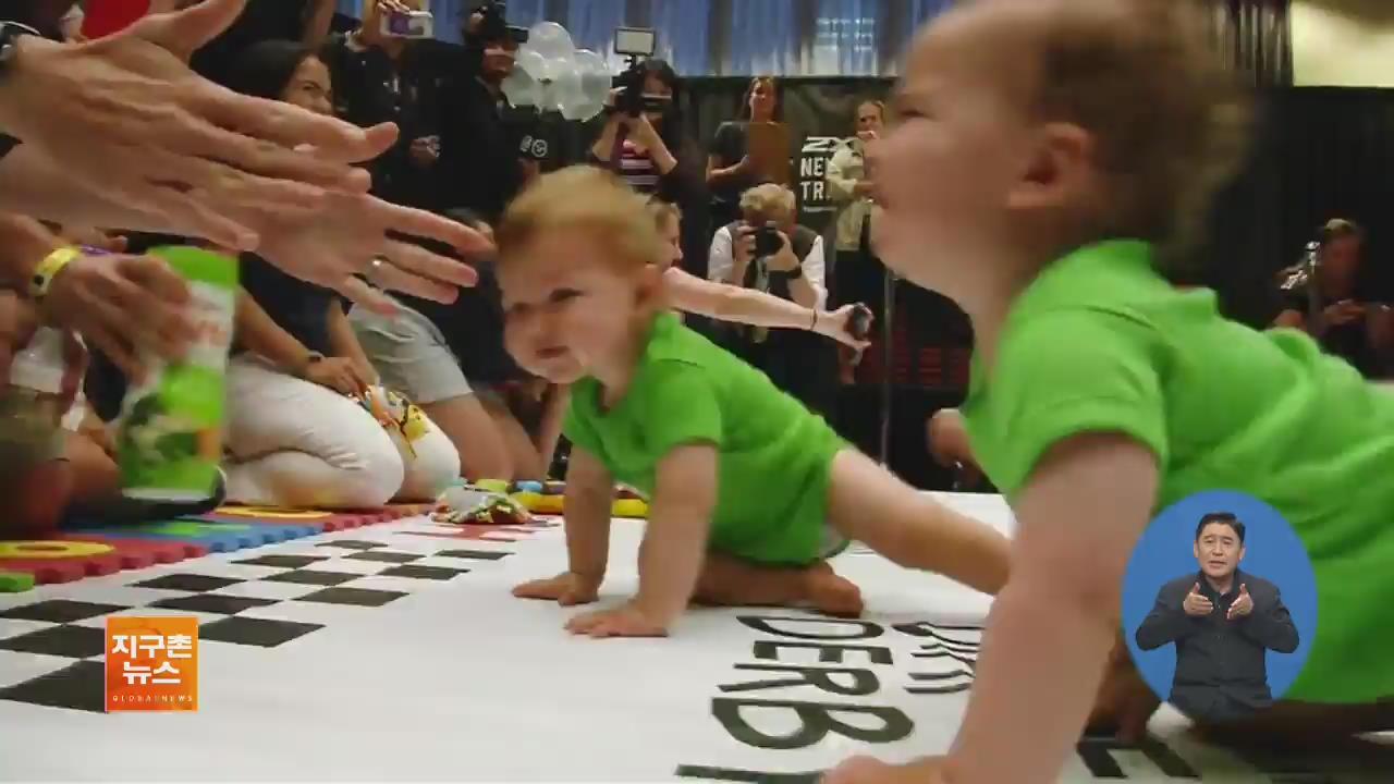 [지구촌 화제 영상] 美 뉴욕, 갓난아이 기어가기 대회