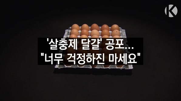 [라인뉴스] 살충제 달걀, 과도한 공포심 경계해야