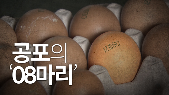 [크랩] 살충제 달걀, 꼭 알아야 할 8 가지!