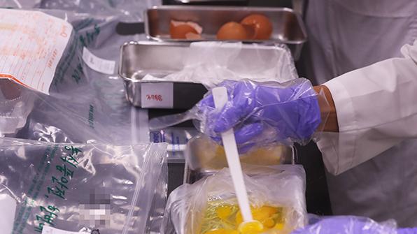 식약처, 시중 유통 '살충제 달걀' 451만 개 압류·폐기 조치