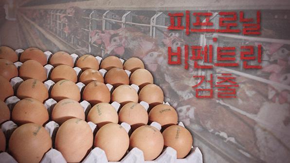 """""""'살충제 달걀' 위해성 거의 없어…하루 126개까지 섭취 무방"""""""