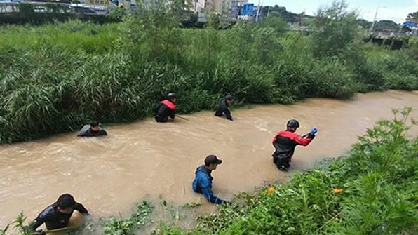 전남 남해안 최고 196㎜ 폭우…비 피해 잇따라
