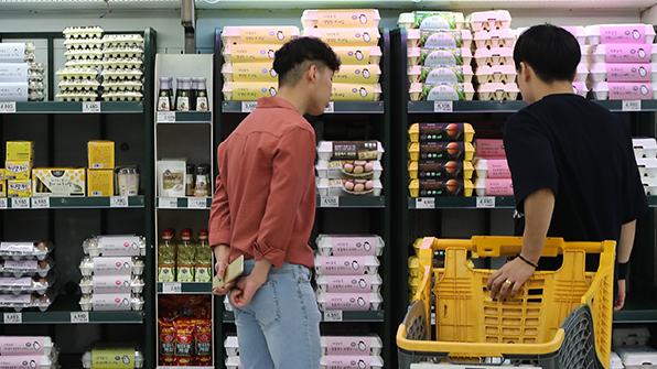 달걀 산지가 25% 폭락…대형마트3사, 오늘부터 판매가 인하